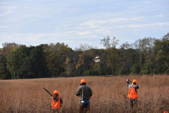 Hunters take aim at a pheasant.