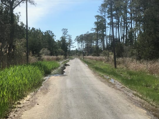 Water stands on Bells Neck Road in Accomack County, Virginia on Tuesday, April 23, 2019. Residents are concerned about frequent flooding of the road.