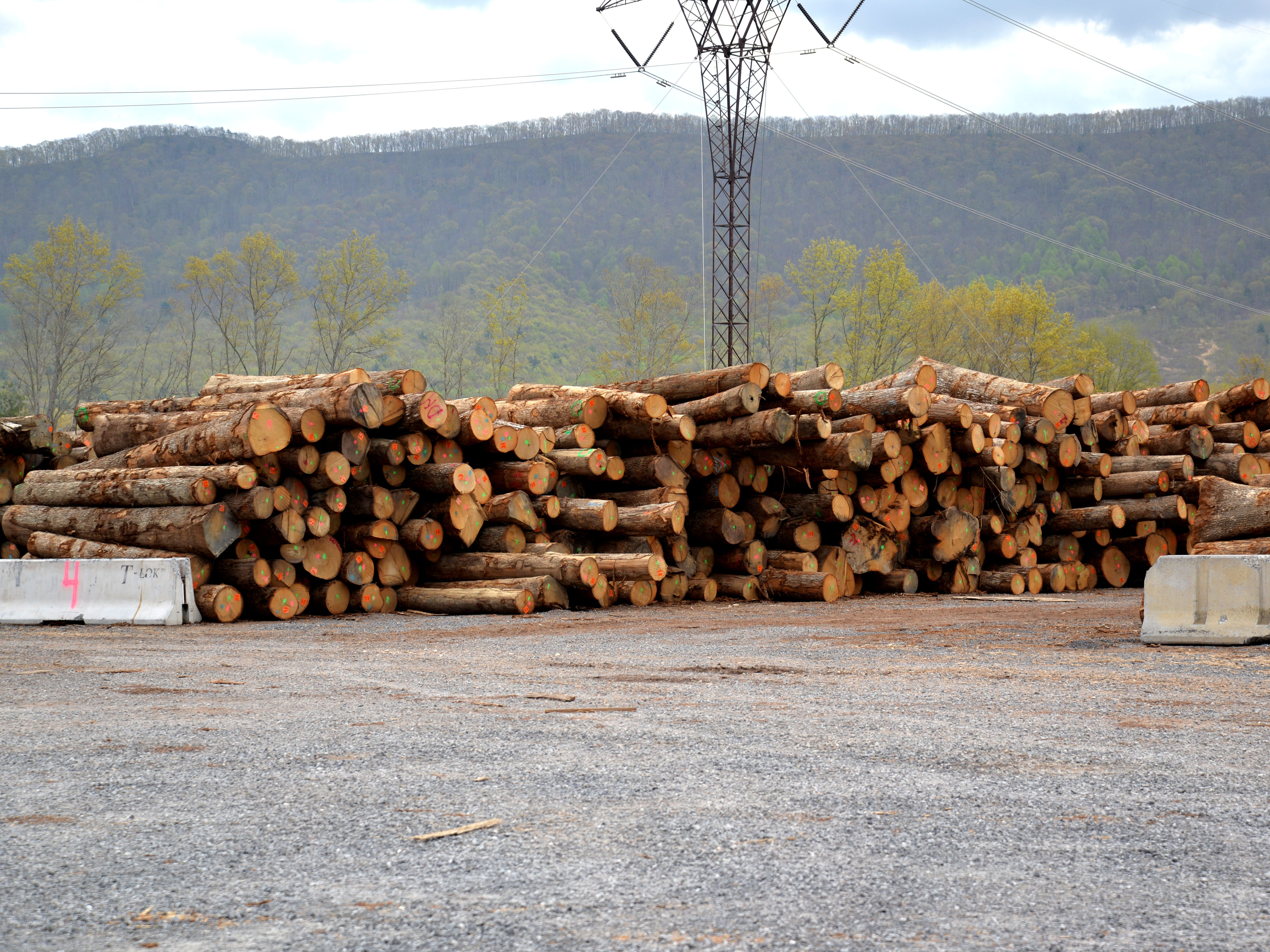 Bourbon stave mill bringing 45 jobs to Bath County, new facilities in Southwest Virginia