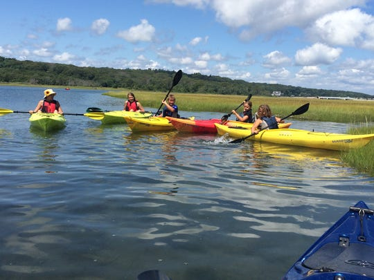 Kid-friendly kayak tours are offered at the Everglades.