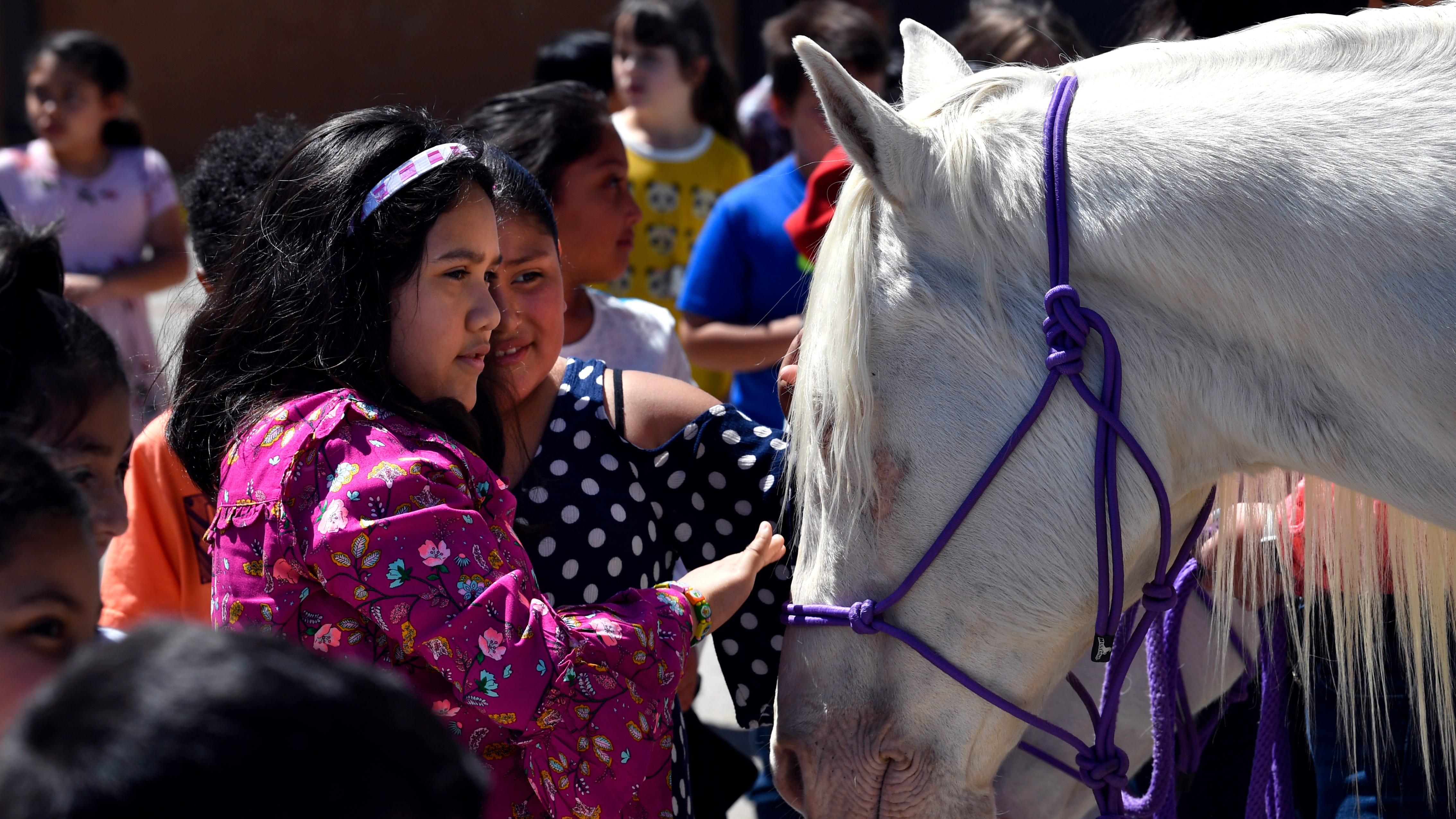 Hardin-Simmons University's Western Heritage Day survives mud scare after wet Wednesday