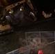 Pipe rupture floods St. Paul Street in Burlington
