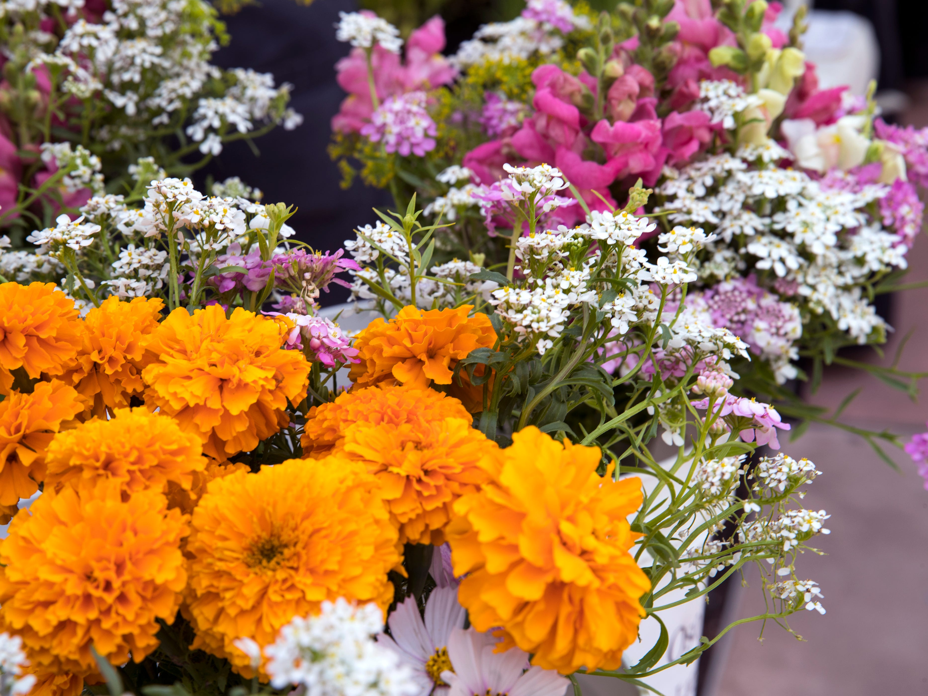 Fresh cut flowers were just one locally grown item available at the Corpus Christi Downtown Farmers Market on Wednesday, April 24, 2019. The farmers market offers a variety of seasonal produce, grass fed beef, pastured raised poultry, prepared goods such as roasted coffee, sweets and preserves and baked goods. It is open weekly on Wednesday from 5 to 8 pm at 100 N. Shoreline Blvd.