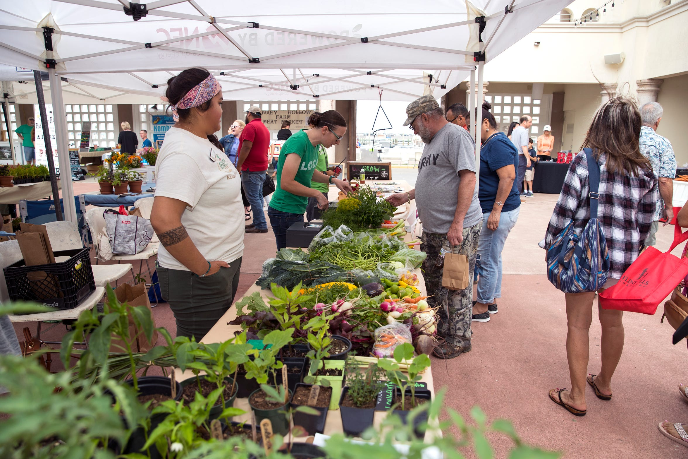 Cynthia Garcia, from left, and Michelle Kish, help customers including Douglas Calhoun shopping at The Learning Garden at Tom Graham Park booth at the Corpus Christi Downtown Farmers Market on Wednesday, April 24, 2019. It offers a variety of seasonal produce, grass fed beef, pastured raised poultry, prepared goods such as roasted coffee, sweets and preserves and baked goods. It is open weekly on Wednesday from 5 to 8 pm at 100 N. Shoreline Blvd.