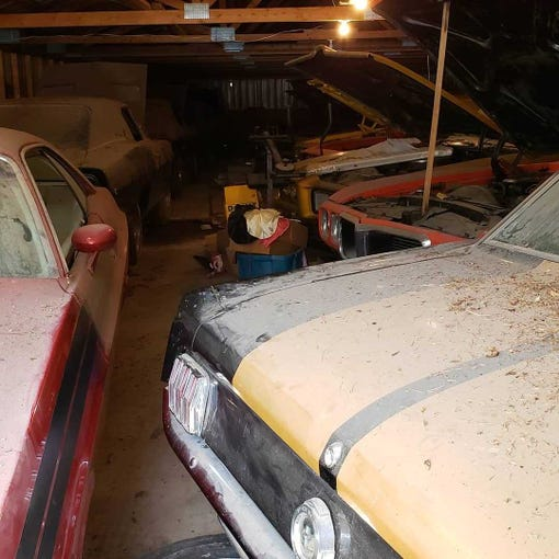 Most of the muscle cars in Coyote Johnson's collection are bound up tightly in sheds that were built around them.