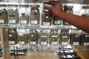 The Medical Marihuana Licensing Board has conducted its last meeting. The monthly meetings likely will be replaced with a rolling application process within the Marijuana Regulatory Agencyestablished through Gov. Gretchen Whitmer's March executive order.