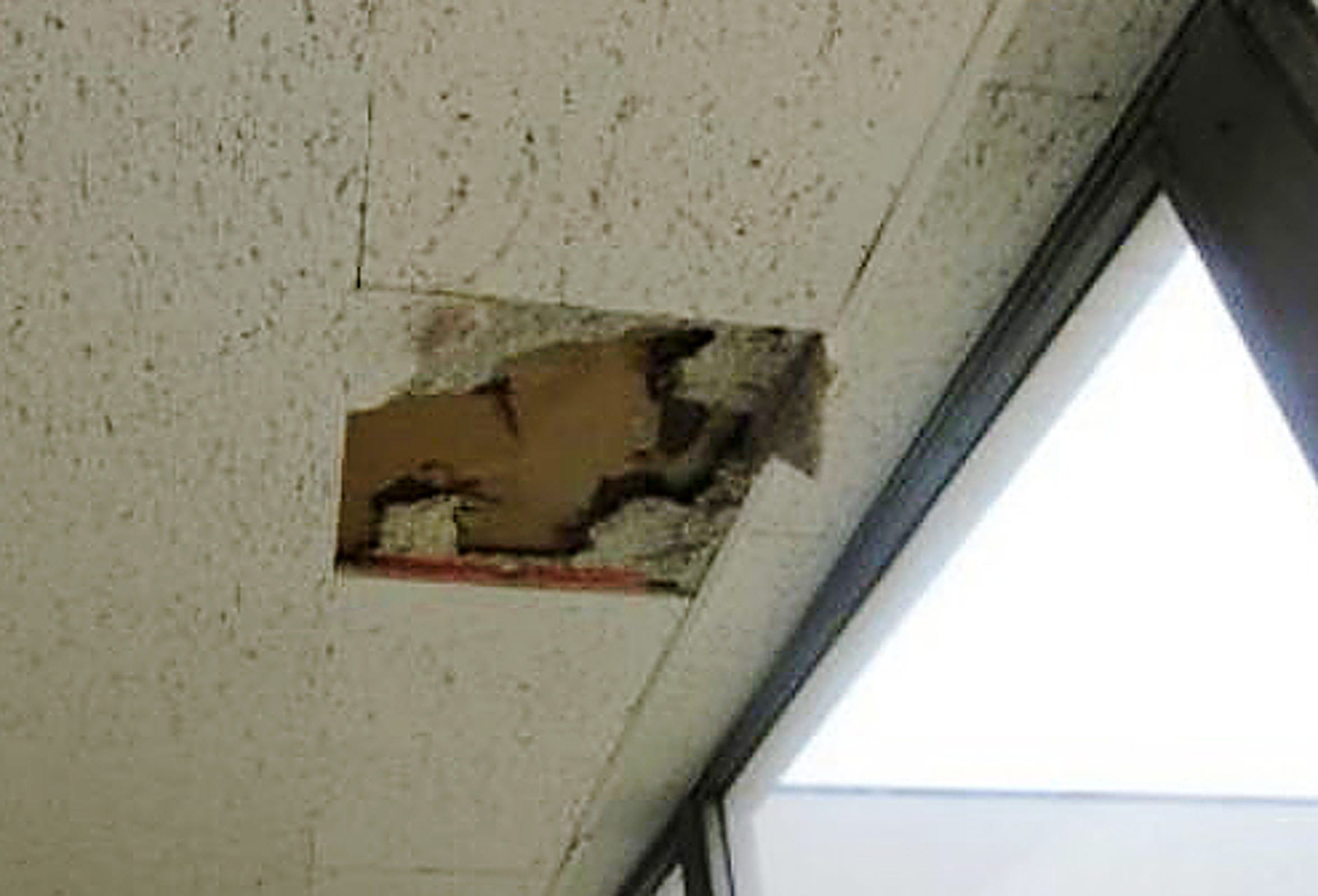 At Moses Field Center, acoustic tiles are damaged from leaks and the gypsum ceiling in several classrooms showed damages from the leak, according to a 2018 report on school facilities. The school needs $1,143,630 in interior repairs.