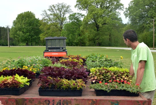 Jason Reeves looks over a few of the many beautiful coleus that will be offered at the Master Gardener plant sale May 4.