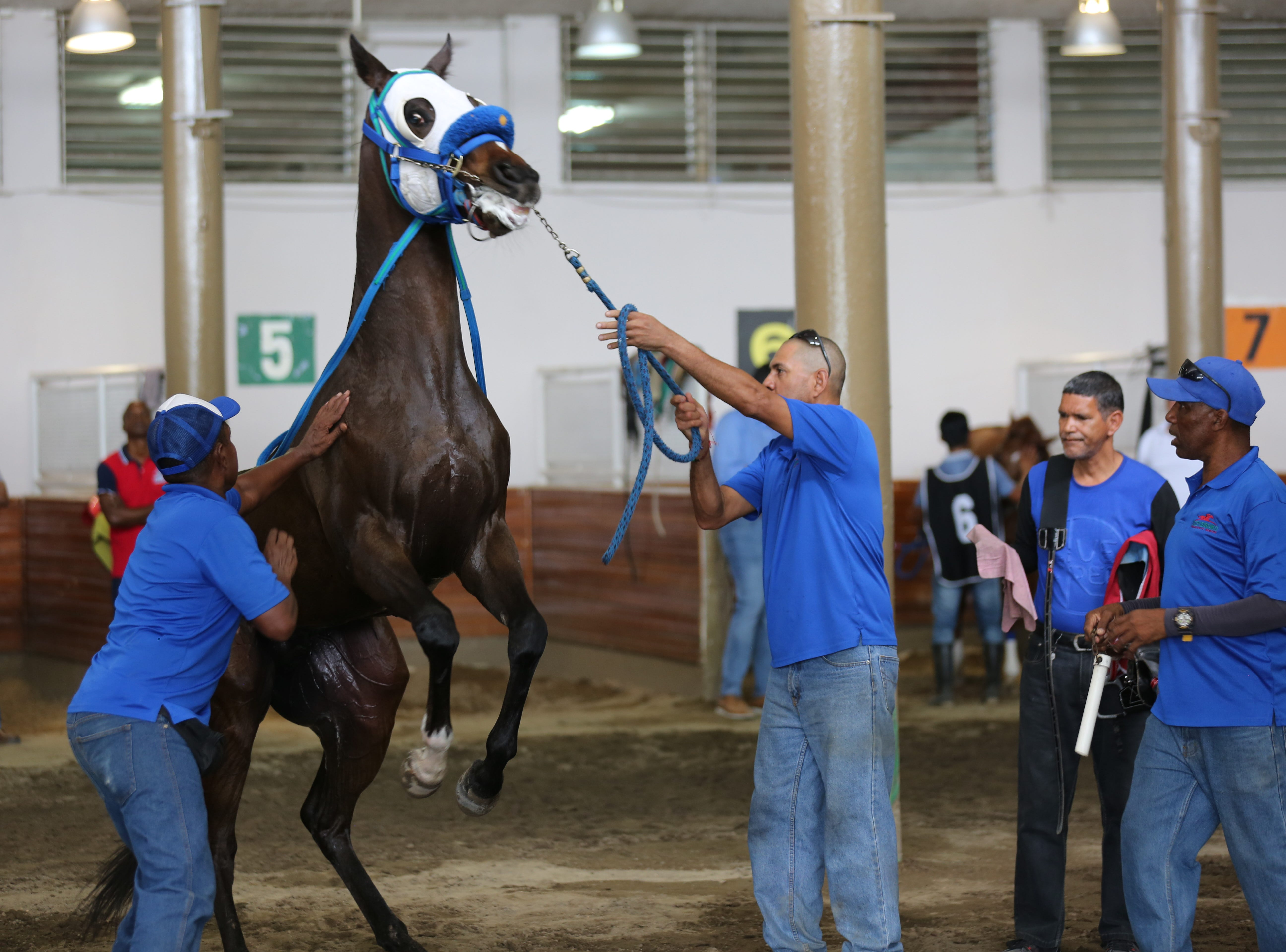 The Laffit Pincay Jr. Technical Jockey Training Academy has trained top thoroughbred riders, including Kentucky Derby winners, for decades in Panama.