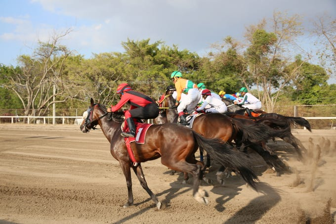 In Panama, known as the 'Cradle of the best jockeys in the world,' the Laffit Pincay Jr. Technical Jockey Training Academy has changed lives and produced some top thoroughbred riders. The famed school, opened in 1960, is located just outside of the country's only racetrack.