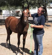 University of Arizona Race Track Industry Program Jade Eisenzimmer with a horse at the school's agriculture campus in Tucson, Arizona.