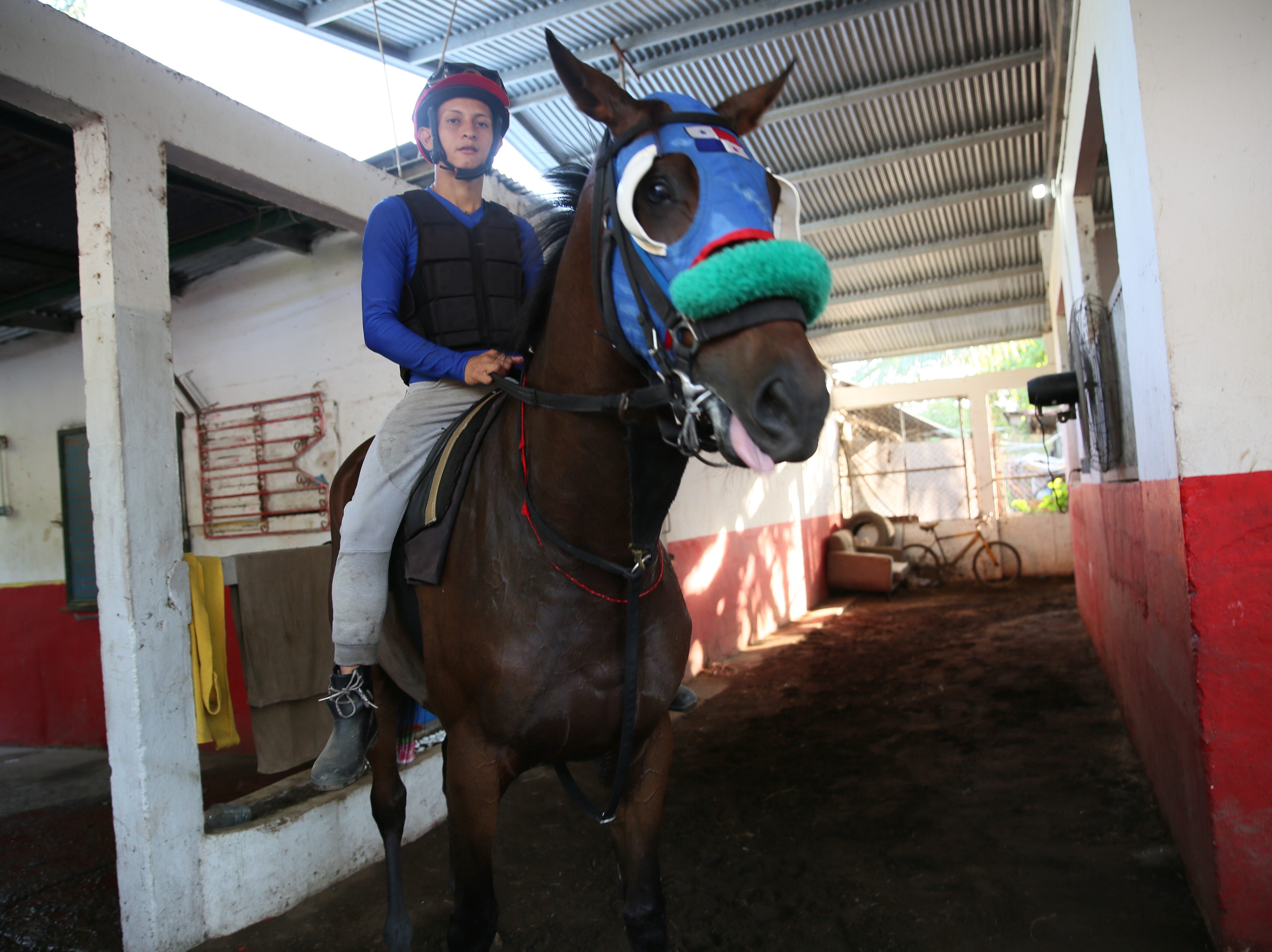 Wilmar Alarcon, 24, is among the students at the famed Laffit Pincay Jr. Technical Jockey Training Academy in Panama, known as the 'cradle of the best jockeys in the world.'