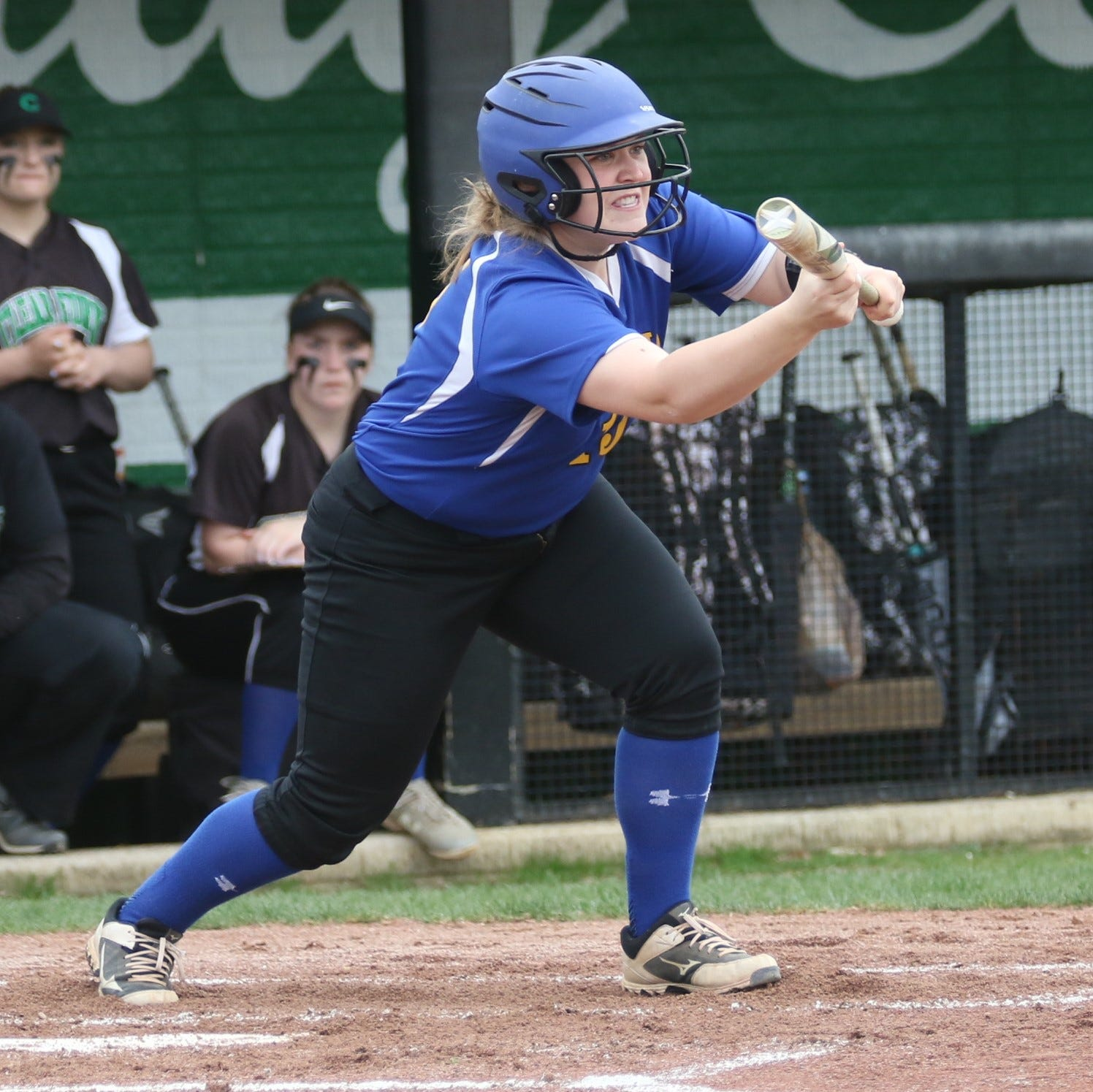 Softball draws lay out tourney trail for area teams