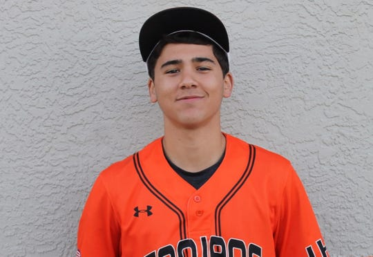 Chris Viamonte, Lely baseball