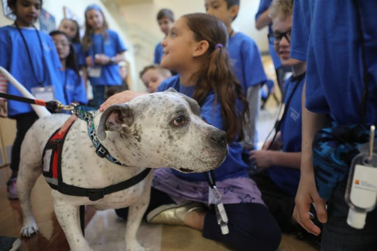 Oreo, a member of Soothing Paws pet therapy, was introduced to youngsters at Morristown Medical Center during the Bring your Kids to Work day. Thursday, April, 25, 2019