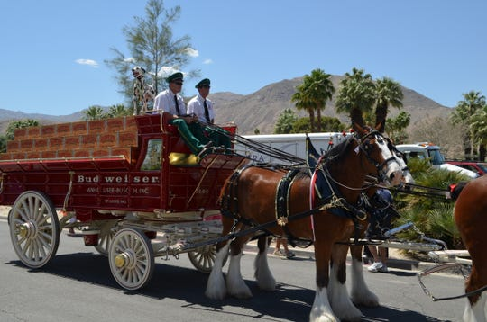 The famous Budweiser Dalmatian 'April' joins two drivers atop a wagon on El Paseo in Palm Desert, Calif., April 25, 2019.