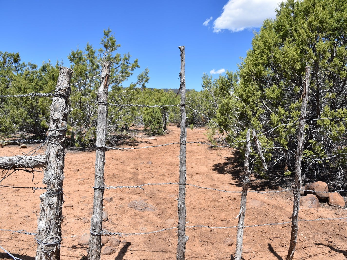 A stick and barbed-wire gate on Cedar Mesa.