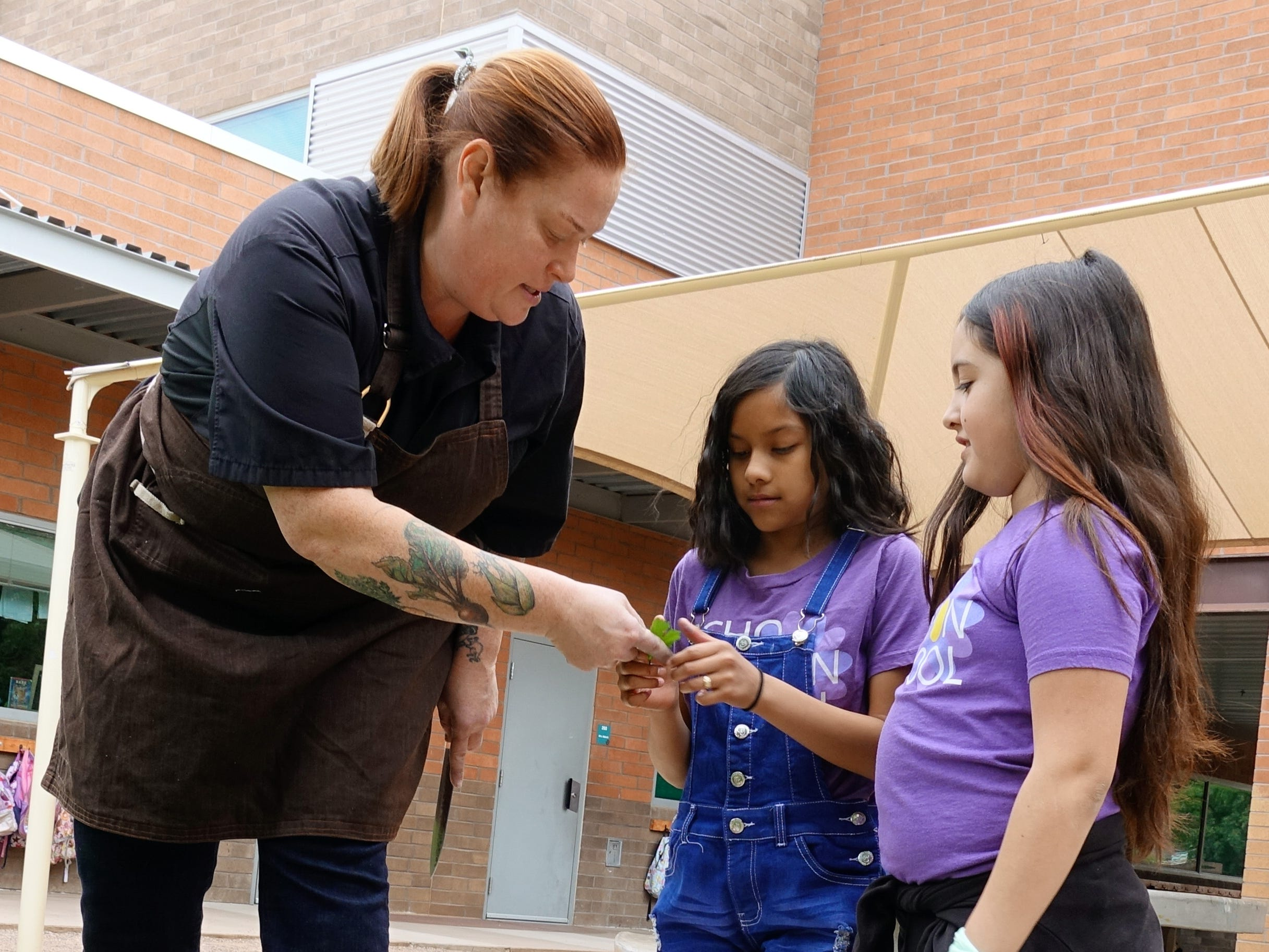 Charleen Badman of FnB picks greens from the garden with students of Echo Canyon School in Scottsdale.