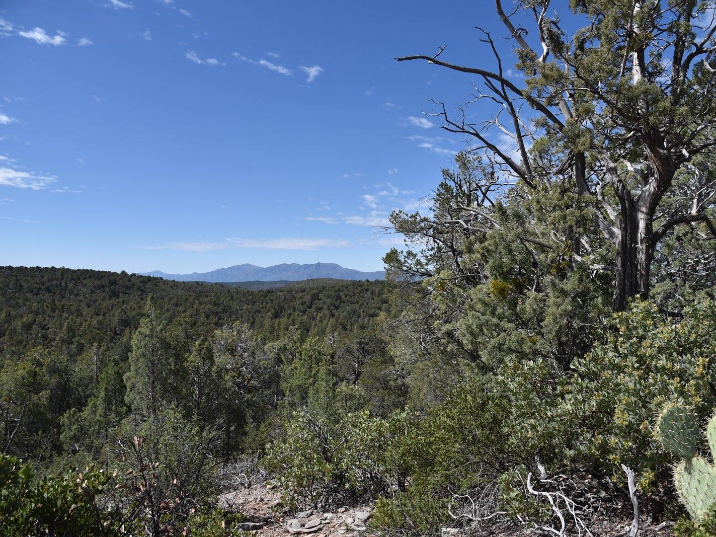Mazatzal Mountains on the horizon.