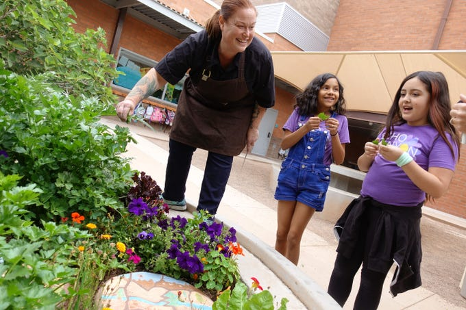 """Charleen Badman of FnB picks greens from the garden with students of Echo Canyon School in Scottsdale. Badman participates in the school's """"Chef in the Garden"""" program, offering hands-on cooking experiences to students."""