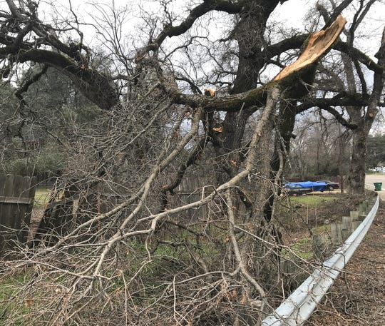 The snowstorm that hit Redding and the surrounding area in mid-February toppled trees and broke branches that's created a fire hazard where the debris hasn't been cleaned up.