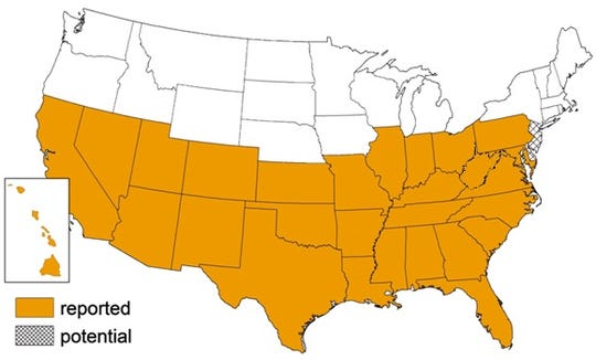 Triatomine bug occurrence by state, according to the CDC.