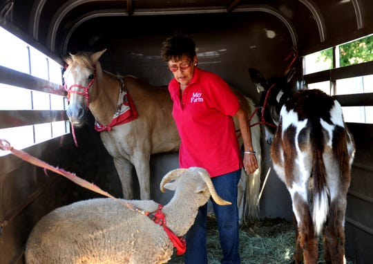 Brenda May, of May Farms, gets animals out of the trailer.