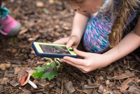 A child participates in the N.C. Arboretum's Youth Ecoexplore program. Everyone can get involved in citizen science in the City Nature Challenge April 26-27