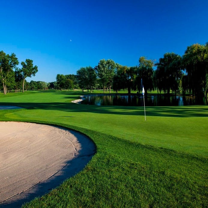 Opinion: Detroit wants you, Tiger Woods