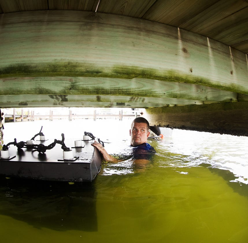 'Mini reefs' installed to bring area waters back to life while helping reduce harmful algae