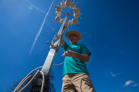 Cape Coral resident and volunteer Eric Nikolai brings down one of the artificial gourd nests racks at Sirenia Vista Park Wednesday, April 26, 2019. Members of the Cape Coral Friends of Wildlife (CCFW) meet on Wednesday afternoons and check on the status of the birds.Cape Coral resident and volunteer Eric Nikolai