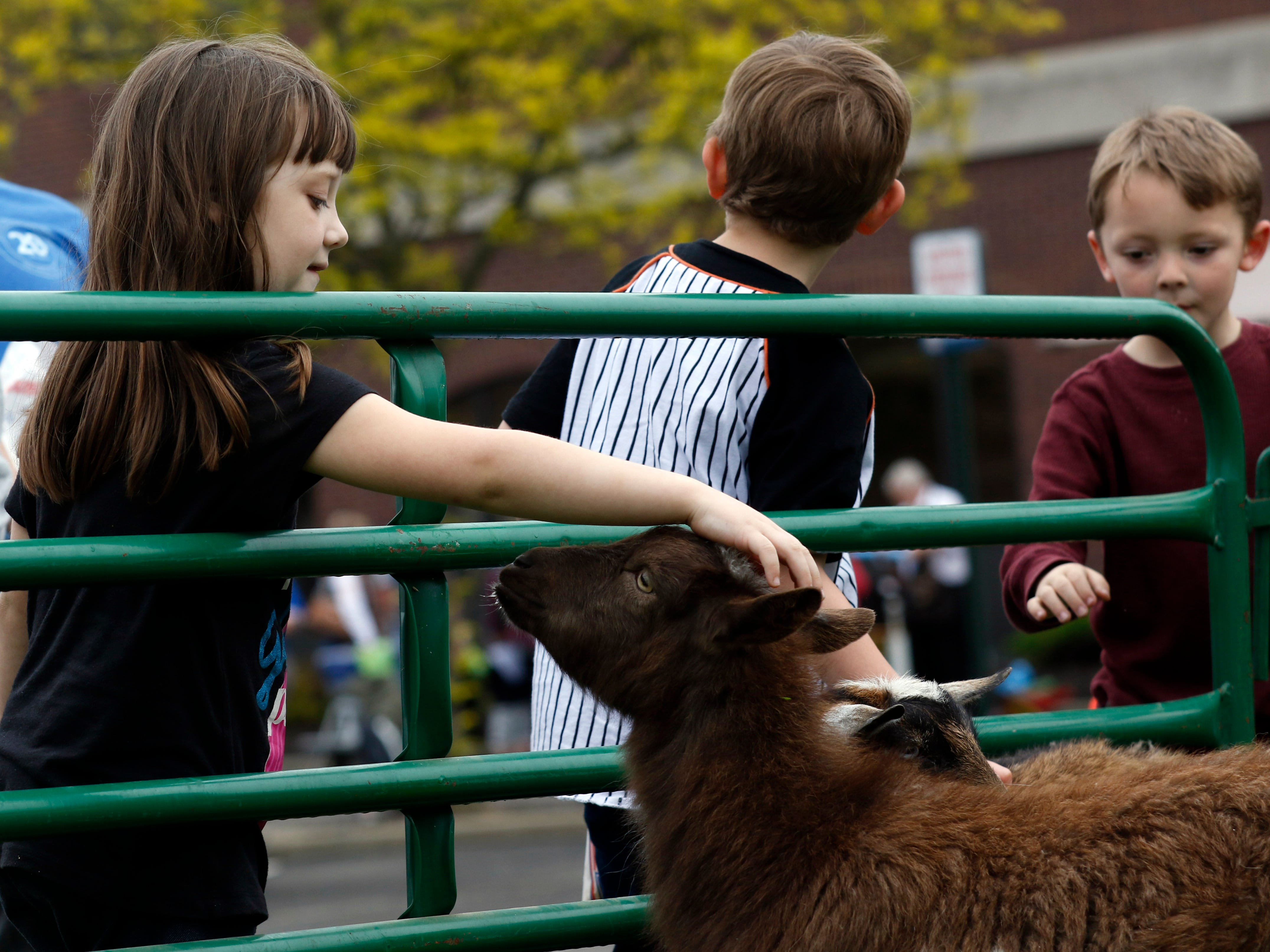 Brenlee Malone, 5, from Logan, pets a pygmy goat Thursday evening, April 25, 2019, during the Fairfield County Job and Family Services' Circus Night event in downtown Lancaster. Hundreds of people attended the event that featured live music, a petting zoo, face painting, food and games all provided for free by local companies and organizations. Fairfield County JFS employees have been organizing the event for 17 years.