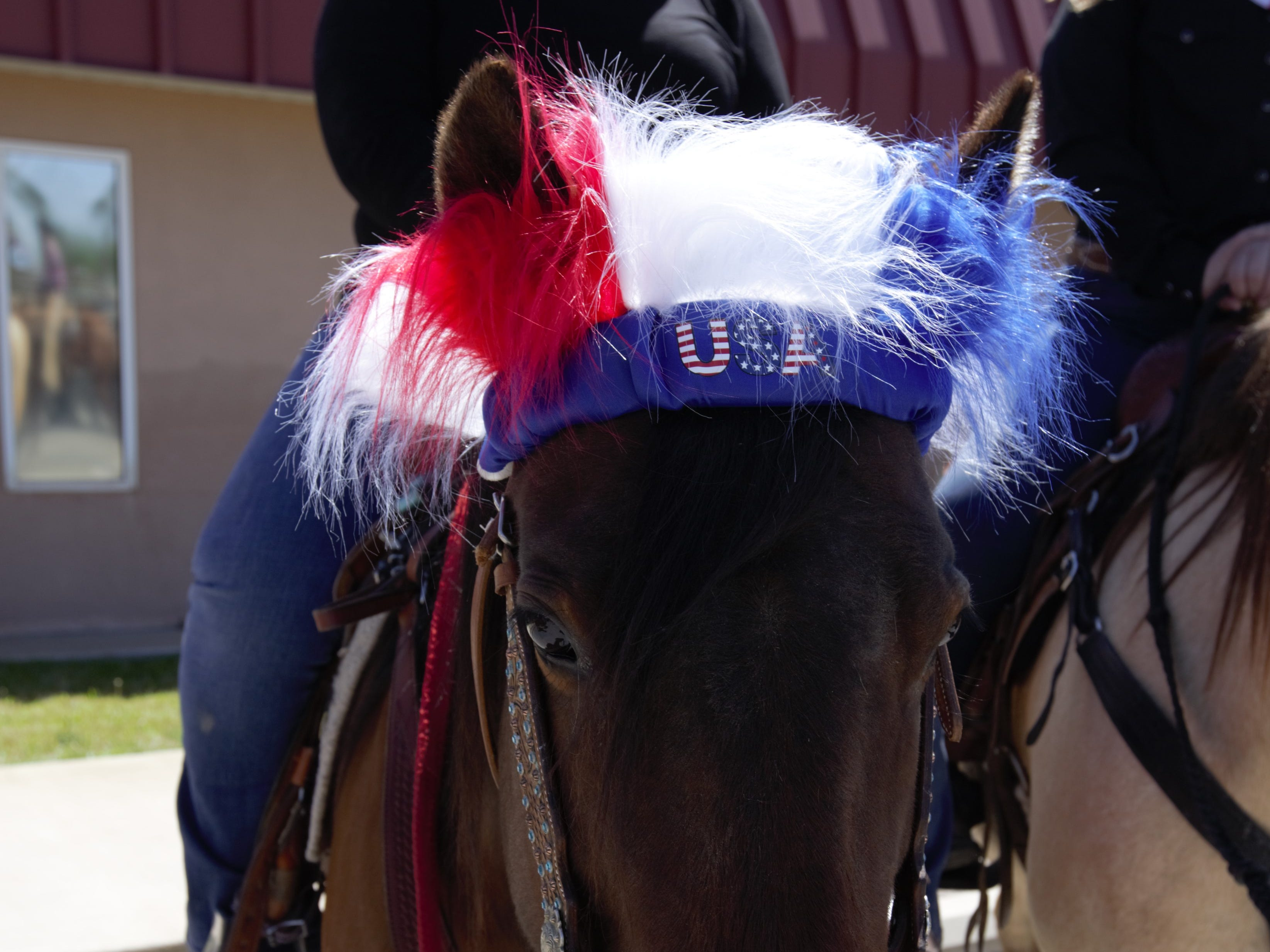 "Amanda Lackey, who lives on the East Mesa of Las Cruces, sits on her horse, June Bug, outfitted with patriotic gear. Lackey was one of dozens of horseback riders who turned out for the event, organized by Cowboys for Trump. ""I think they have a lot of good ideals, and I support them in everything they do,"" she said of the group."