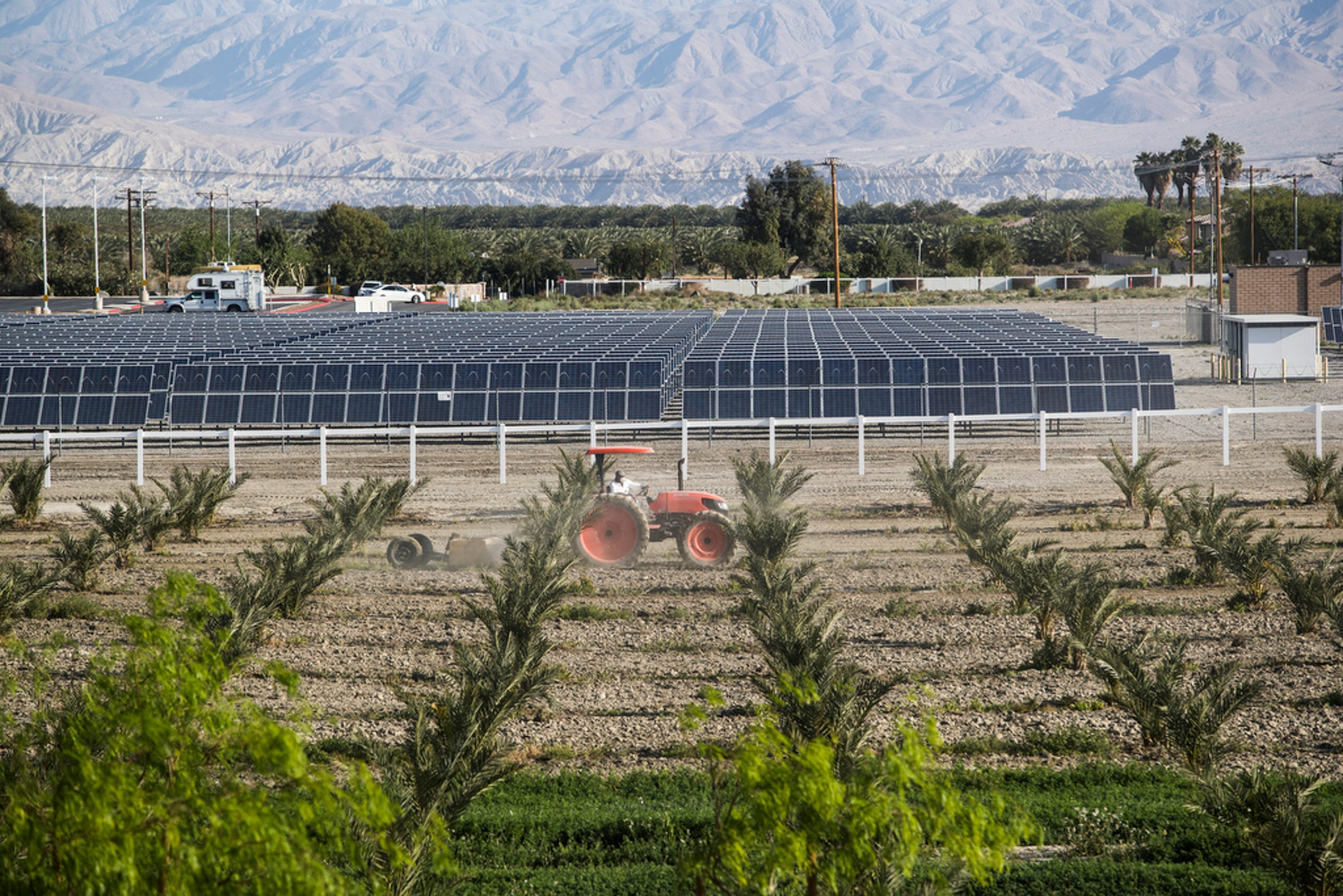 The Augustines in 2008 opened the first phase of its 3-megawatt solar farm, which helps power its 30,000-square foot casino. Rows of palms are part of the 33-acre organic farm the tribe is preparing to open in the coming months.