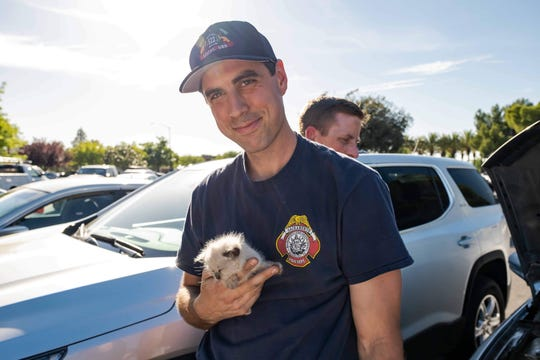Firefighter Taylor LeClaire and kitten
