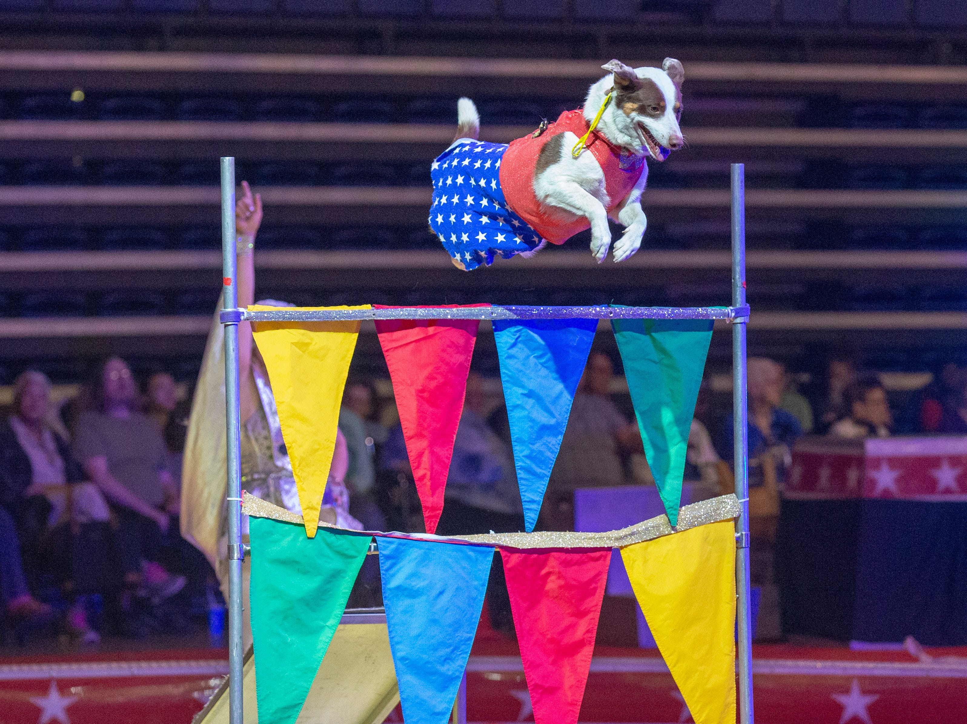 Members of the 2019 El Riad Shrine Circus perform at the Sioux Falls Arena during Thursday's show.  Shows run Thursday through Sunday; you can find more informationon show times at elriadshrine.com.