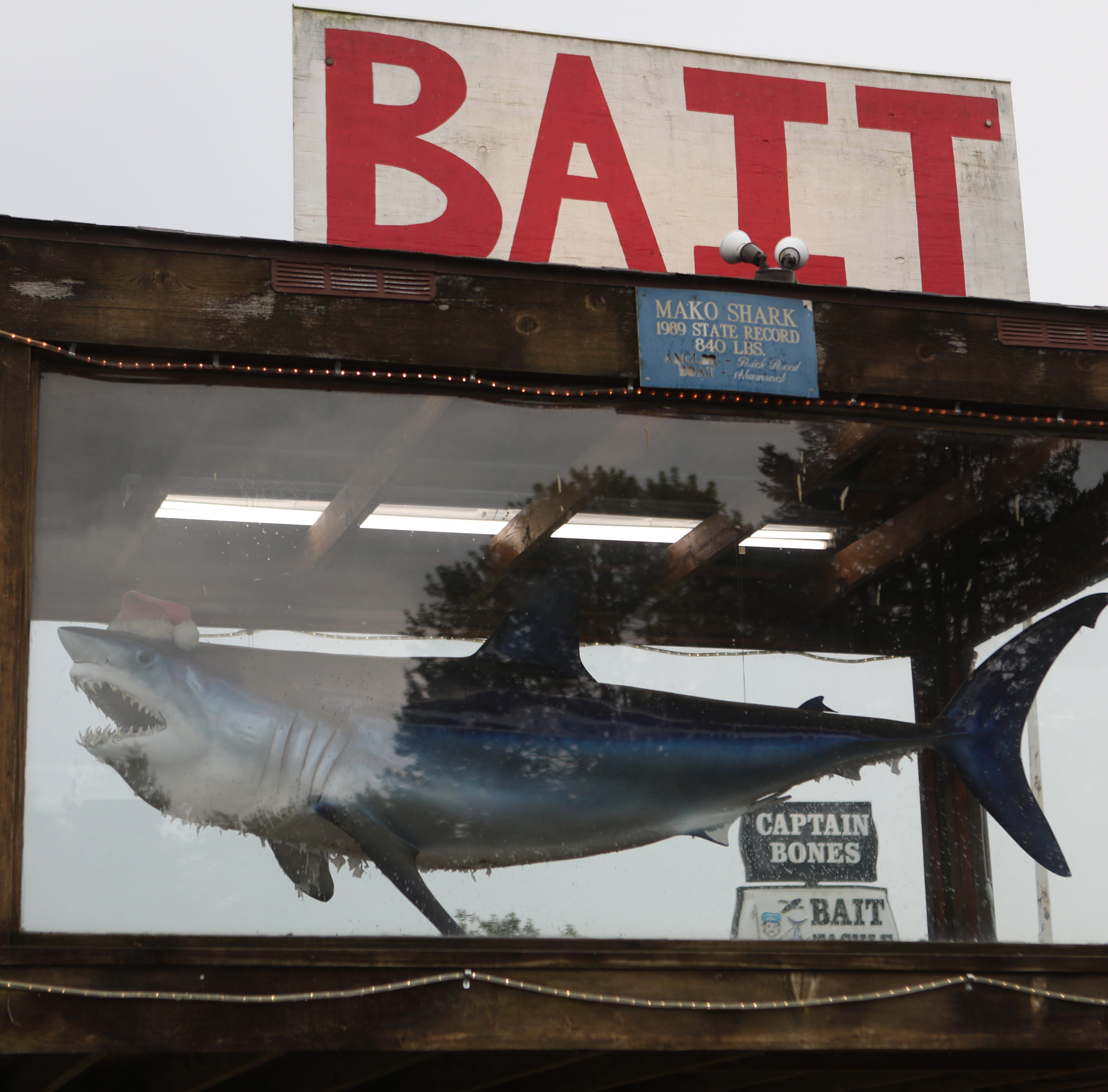 Why is this here? The story behind Odessa's giant shark in a Santa hat