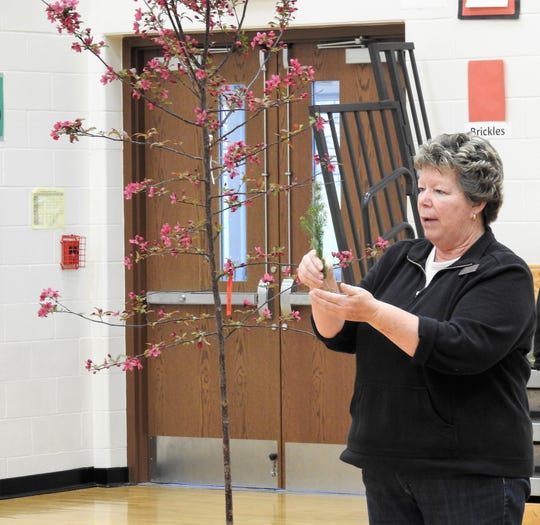 Deb Bigelow of Coshocton Soil and Water Conservation District talks about a seedling students were able to take home and plant for Arbor Day on Friday at Coshocton Elementary School.