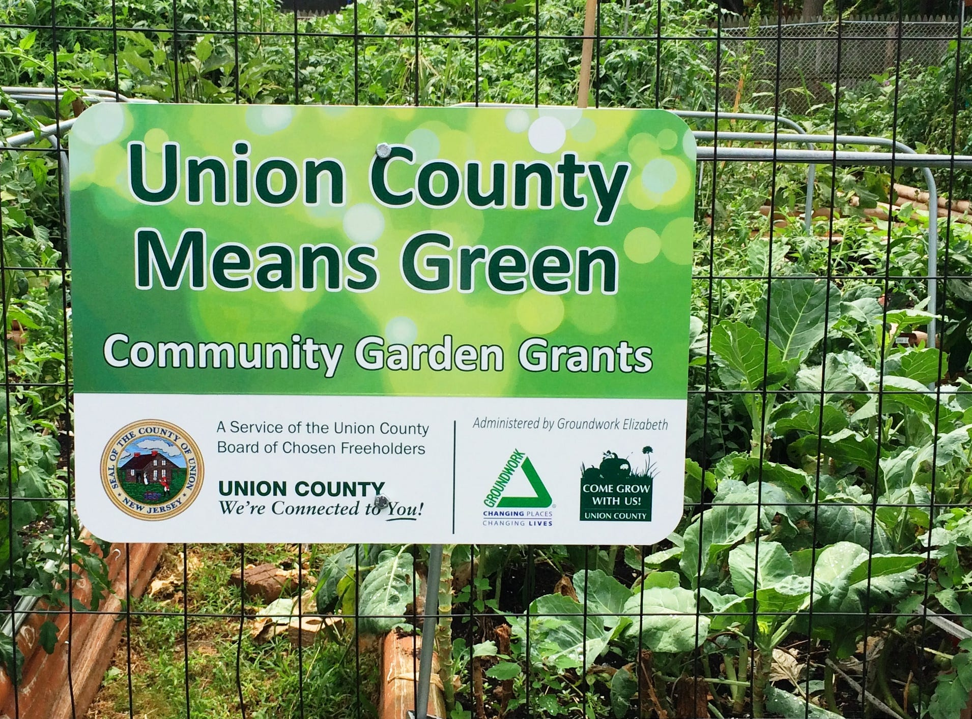 Grants have been awarded to 42 garden projects in 14 municipalities through the Union County Means Green Community Garden Grants program.