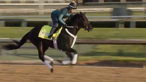 Check out Win Win Win's Friday Kentucky Derby training run at Churchill  Downs