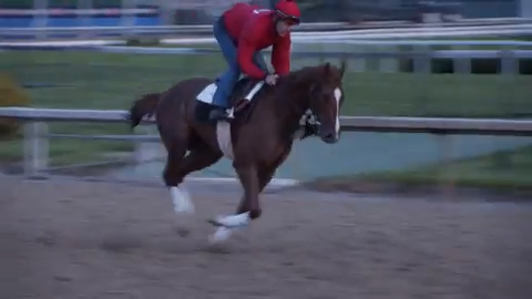 Check out Code of Honor's Saturday Kentucky Derby training run at Churchill  Downs