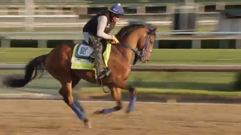 Check out By My Standards' Saturday Kentucky Derby training run at  Churchill Downs