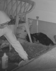 Chambersburg Police Department released this image taken from a surveillance video after a wheelchair ramp at the rear of a home on South Fourth Street was set on fire the evening of April 26. Police believe the man shown is Michael McClure.