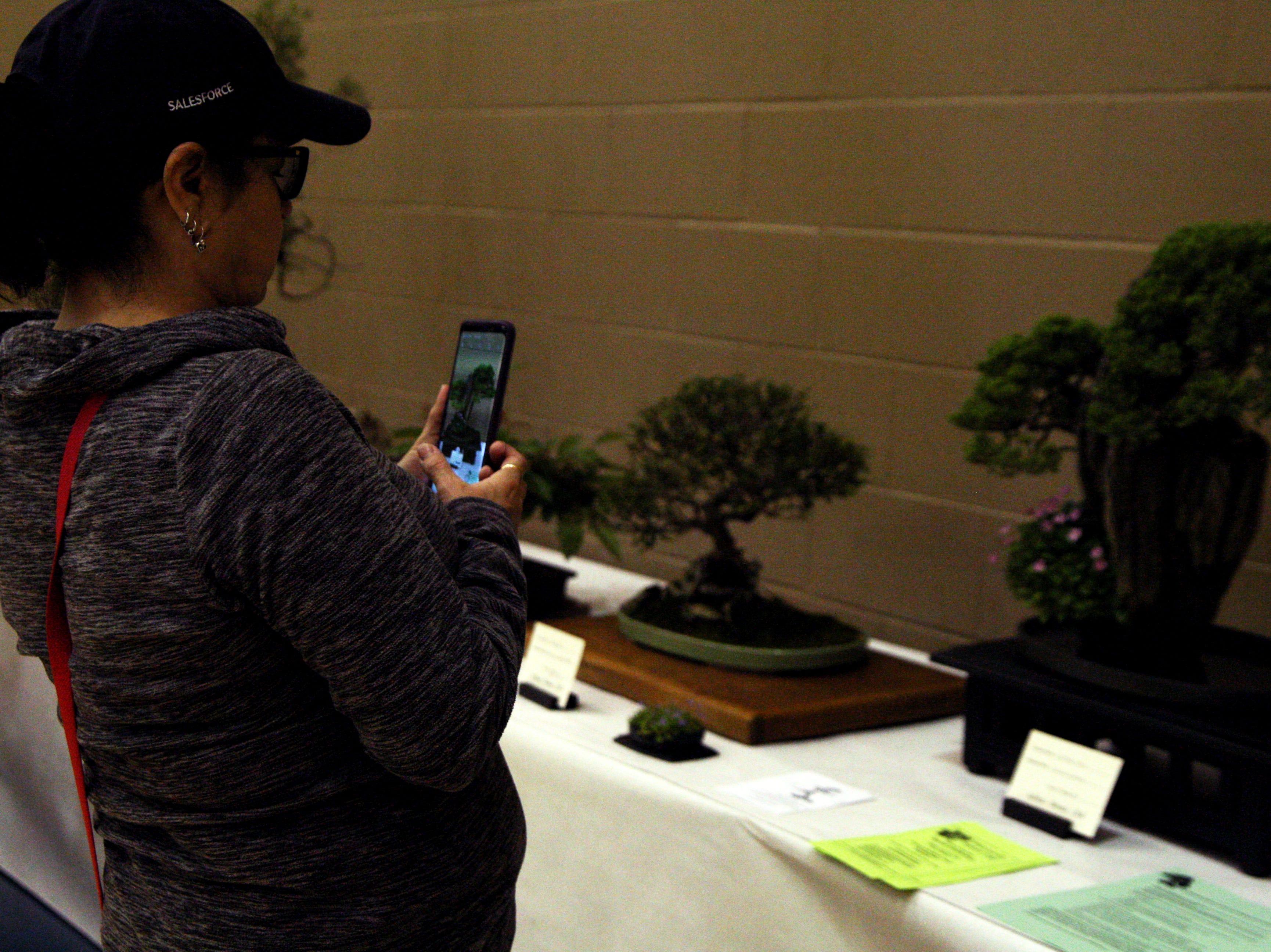 A woman takes a photo of a bonsai tree after a bonsai demonstration. April 27, 2019.