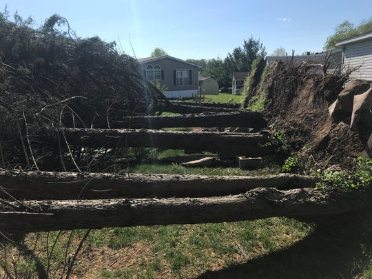 The National Weather Service believes straight-line wind is responsible for bowling over trees in communities like Hunter's Run south of Bear.
