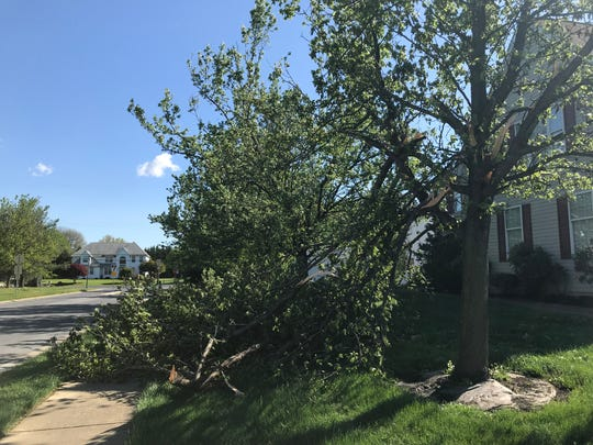 The National Weather Service is blaming straight-line wind for damage to trees and roofs in several communities in Delaware, such as Mariner's Watch south of Bear.