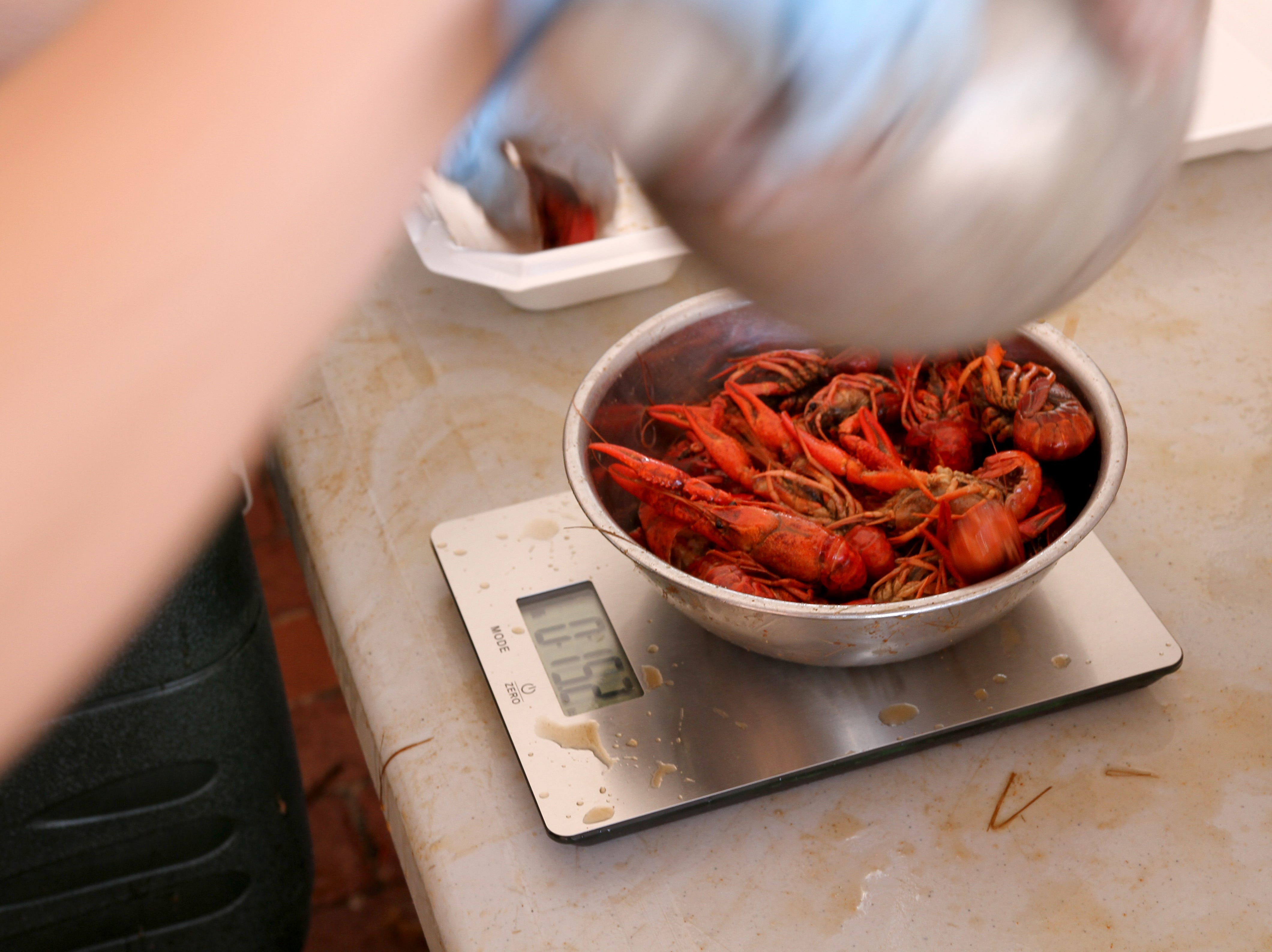 Crawfish is weighed at Cajun Fest Saturday, April 27, 2019, at 10th and Ohio downtown.