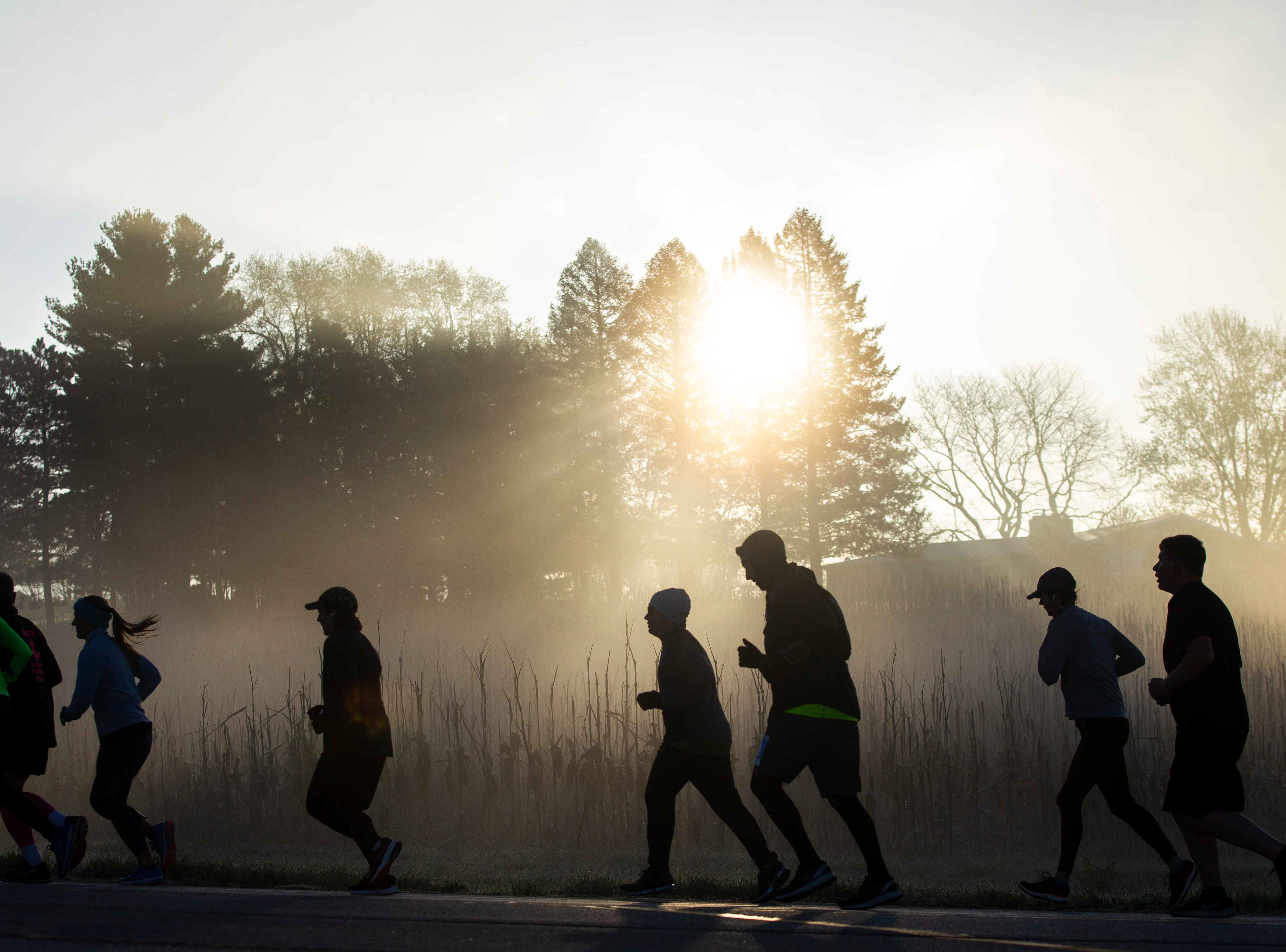 Runners ascend a hill as sun shines through a tree in a foggy valley during the second annual Run CRANDIC marathon, Sunday, April 28, 2019, along Dubuque Street in Iowa City, Iowa.