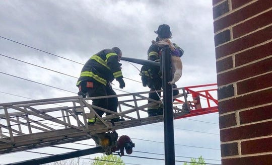 Lt. Kyle Hummel and Robert Chace of the Englewood Fire Department rescue a dog that was impaled on a streetlight post.