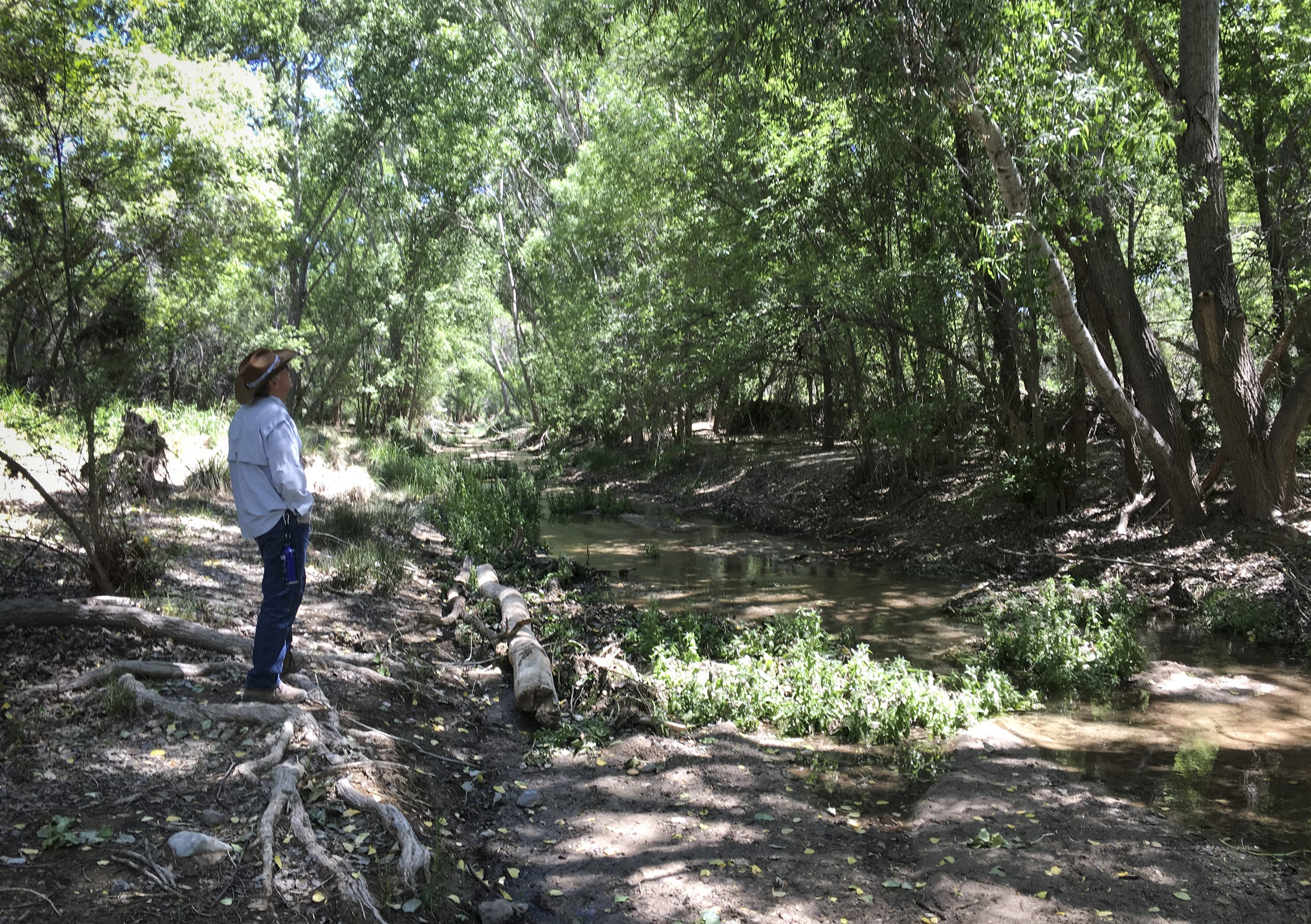Steve Brown, board member of Save the Scenic Santa Ritas, walks along Cienega Creek on April 24, 2019.